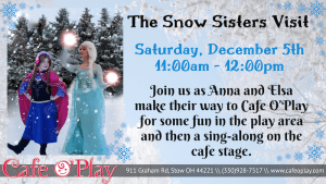 Elsa & Anna: The Snow Sisters!